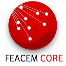Logo Feacem Core.