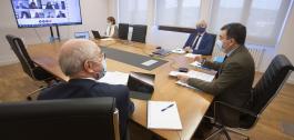 Reunión por videoconferencia do Comité Educativo.